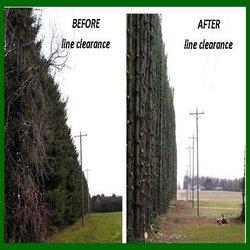 powerline clearance kansas city