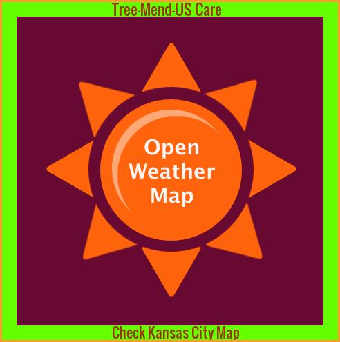 tree weather kc